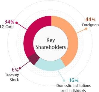 Key Shareholders Foreigners 46%, LG Corp. 34%, Domestic Institutions and Individuals 14%, Treasury Stock  6%